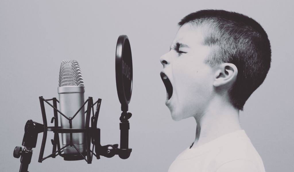 Schweizer Italienisch Mikrofon